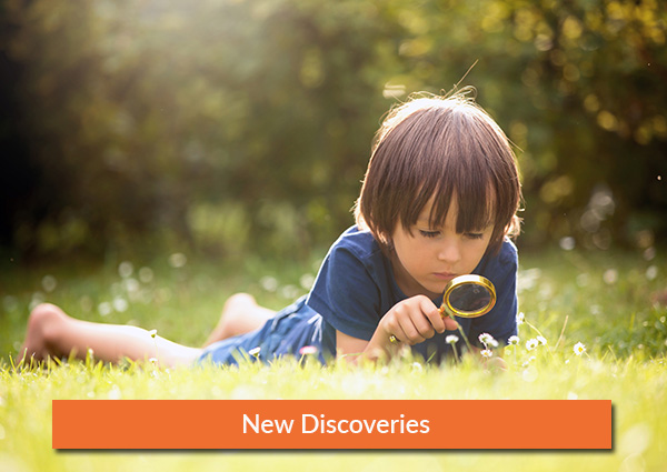 New-Discoveries